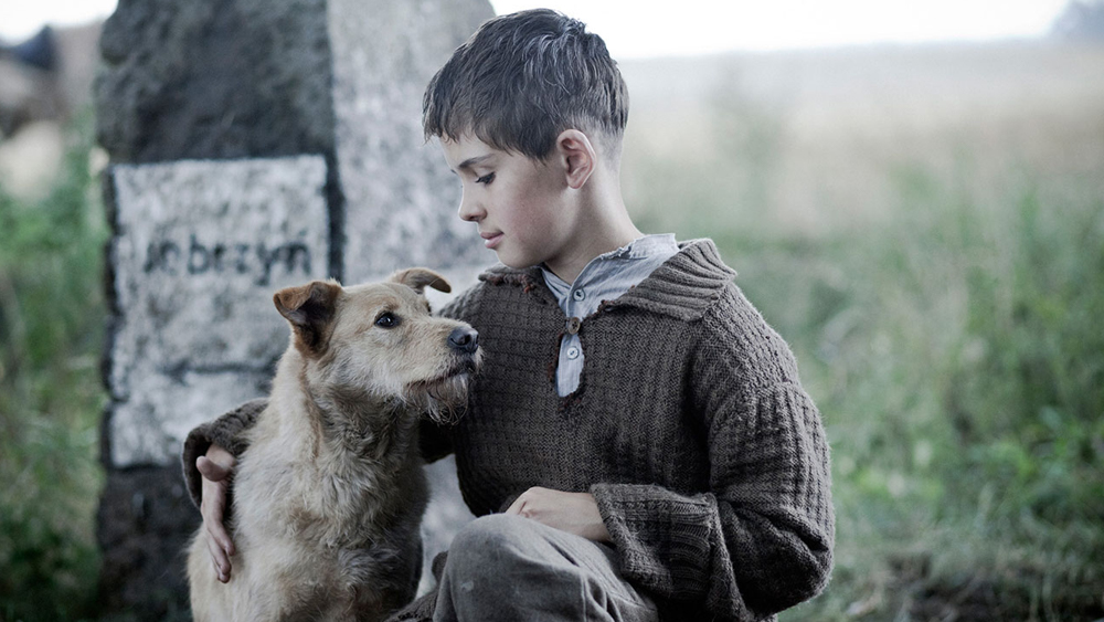 Image of a boy kneeling with a very cute dog in a field in front of a marker with letters on it.