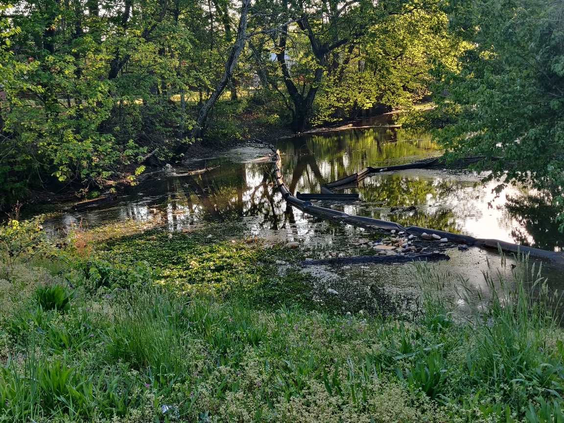 Warfield Canal