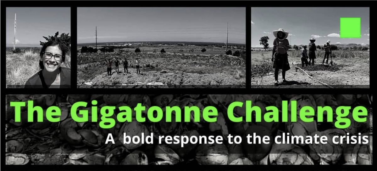 The Gigatonne Challenge: A bold response to the climate crisis