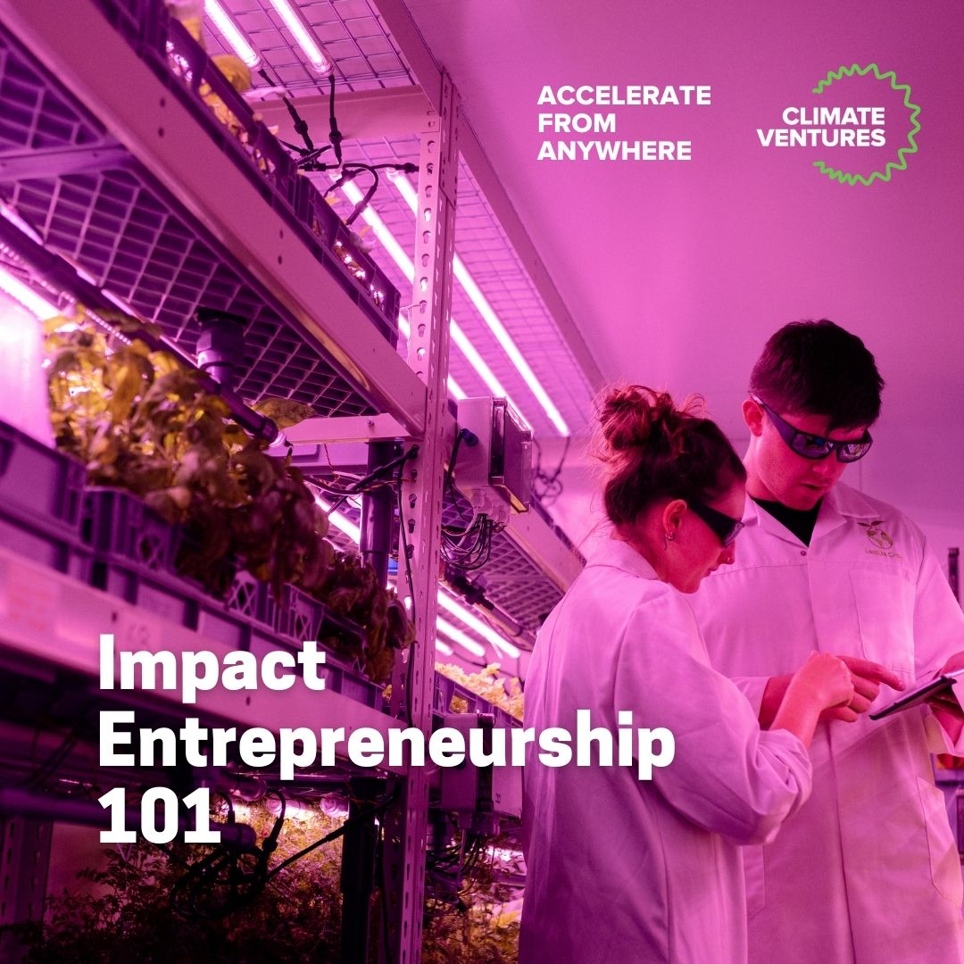 Impact Entrepreneurship 101, an Accelerate from Anywhere program