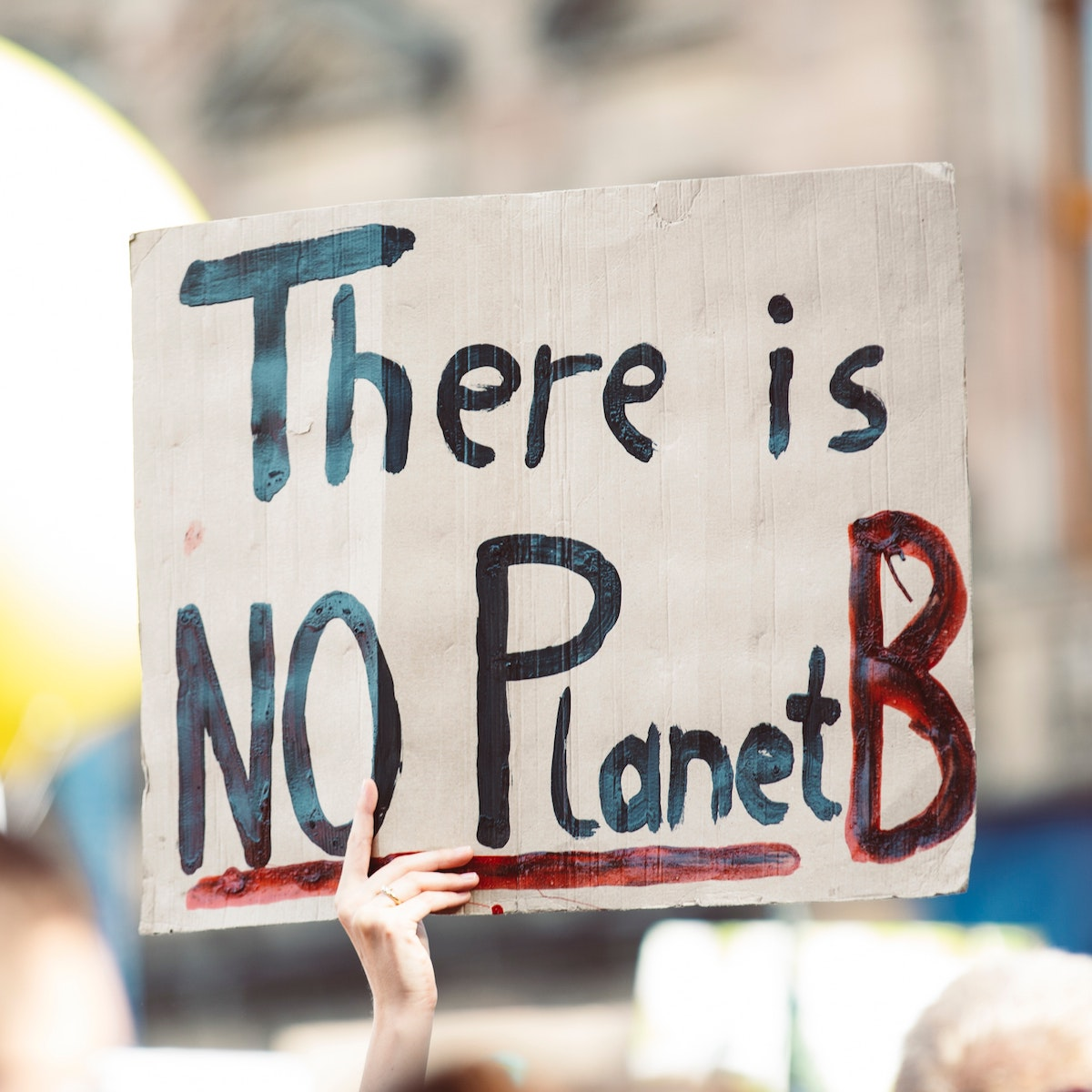 """Person holding up sign that says """"There is no Planet B"""""""