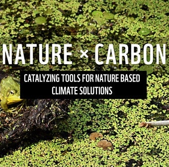 Nature x Carbon: Catalyzing Tools for Nature-based Climate Solutions