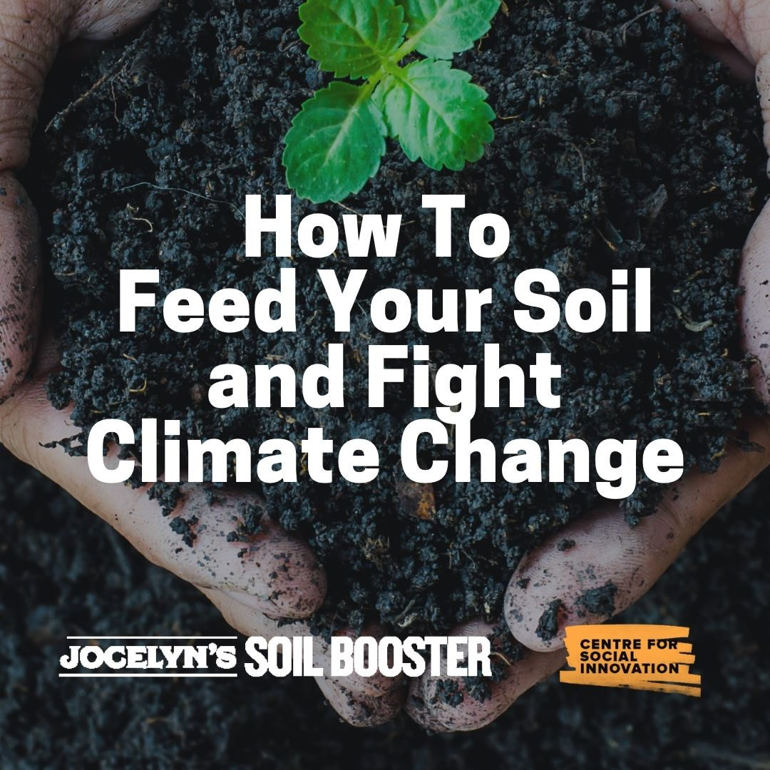 How to Feed Your Soil and Fight Climate Change