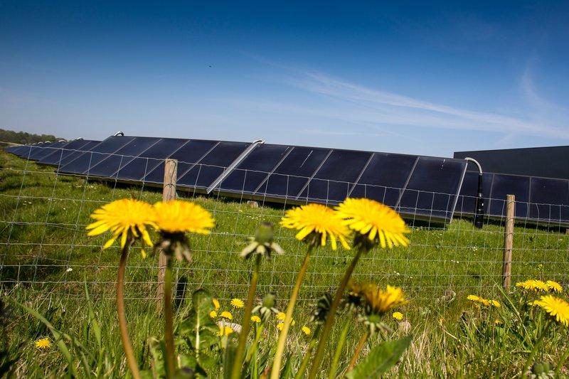 Kommunens største solcellepark på vej til Sydals