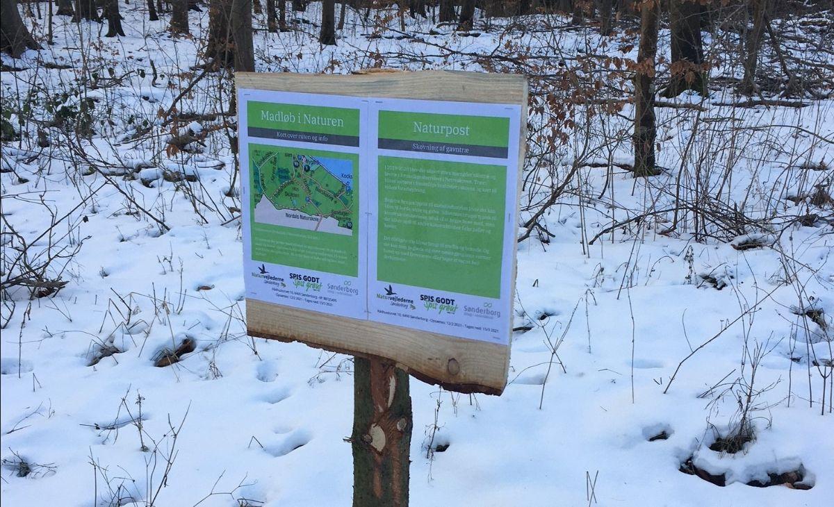 KommuneNyheder - Tag på madløb i skoven i vinterferien
