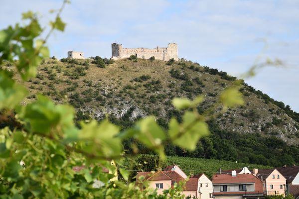 Co nového na Moravě? 🍷💃 Report plný vína z Pálavy