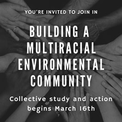 Link for Building a Multiracial Environmental Community