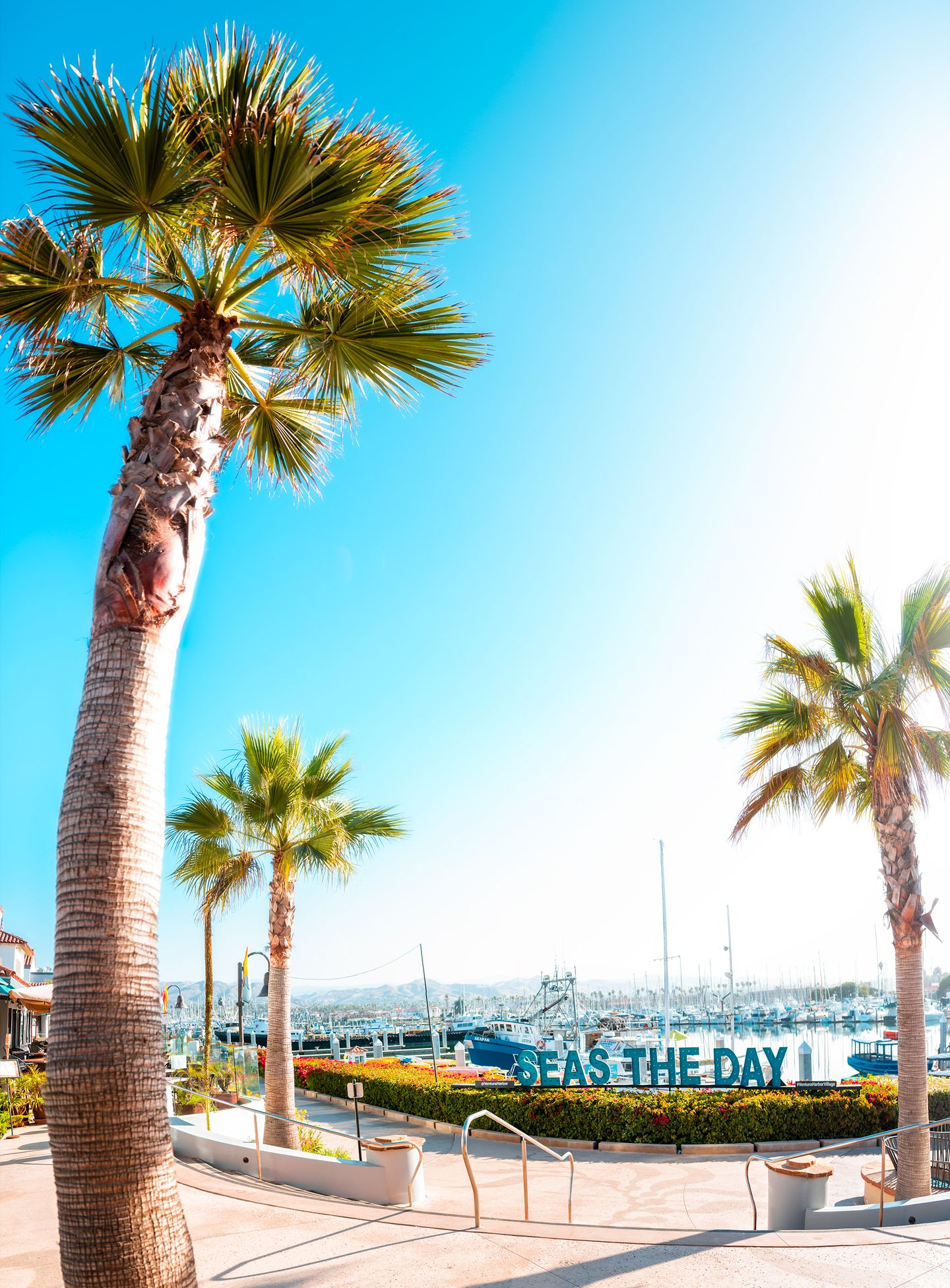 Ventura Harbor Village is open for summer! SEAS the day with us, seaside! Ventura Harbor Village has waterfront dining, seaside shopping, pampering, and entertainment. See below for local favorites, recommendations, and the ultimate guide to summer fun in Ventura Harbor.