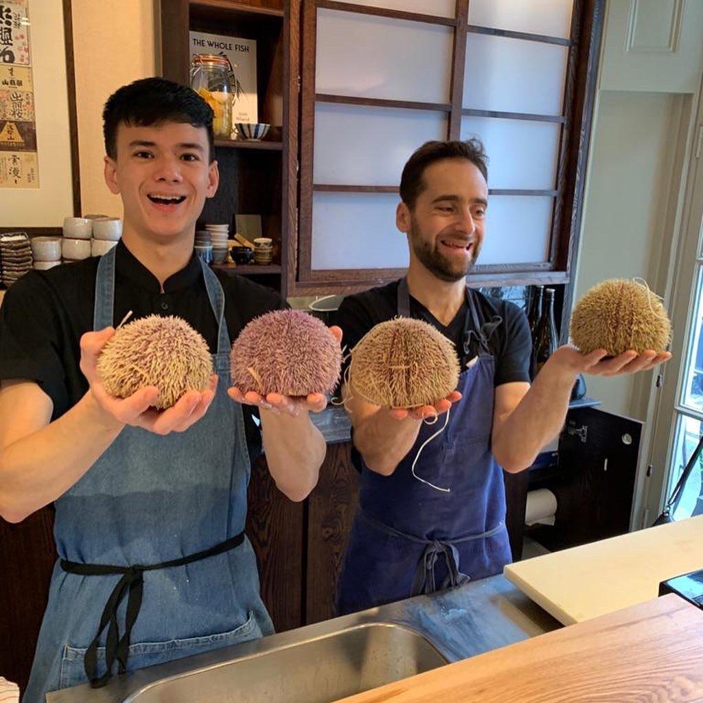 Chefs holding sea urchin