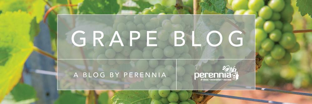 Nova Scotia Grape Blog