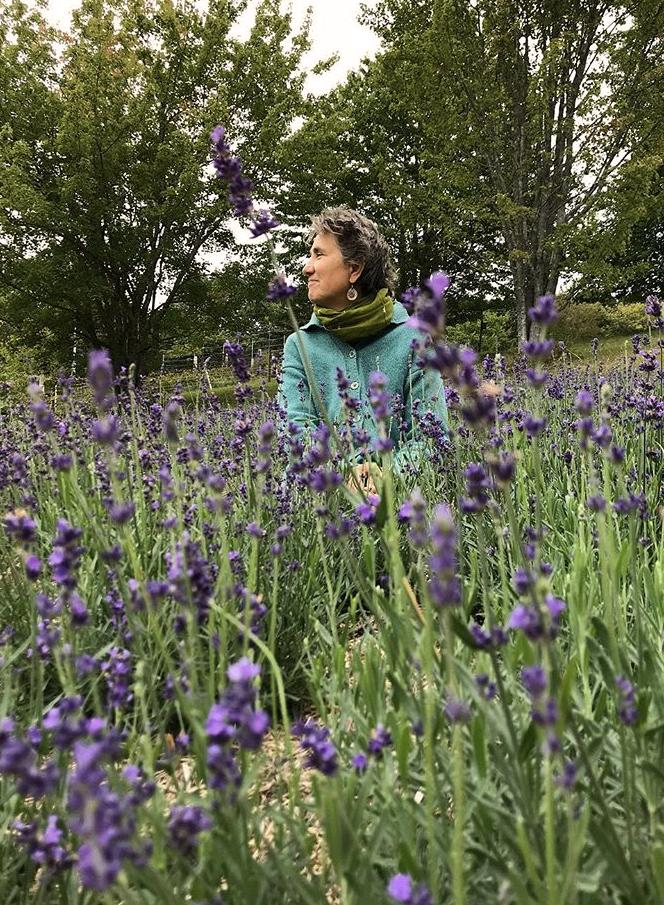 Deb in the lavender
