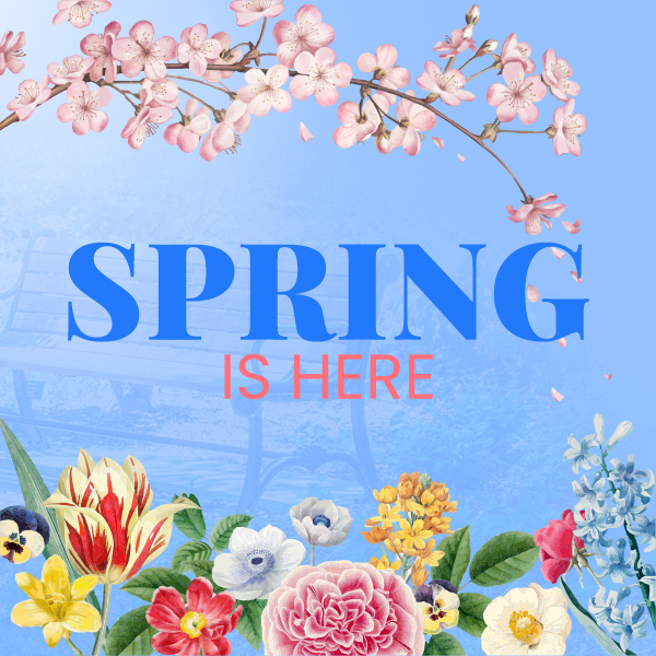 Spring is here - Candyland Aldine March 2021 Curriculum