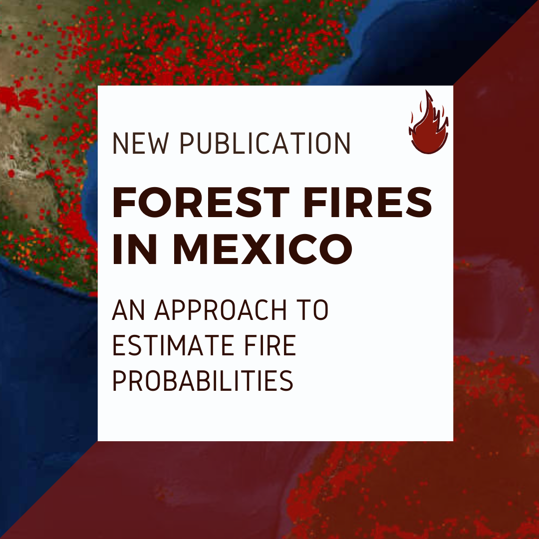 Decorative: Forest Fires in Mexico, an approach to estimate fire probabilities