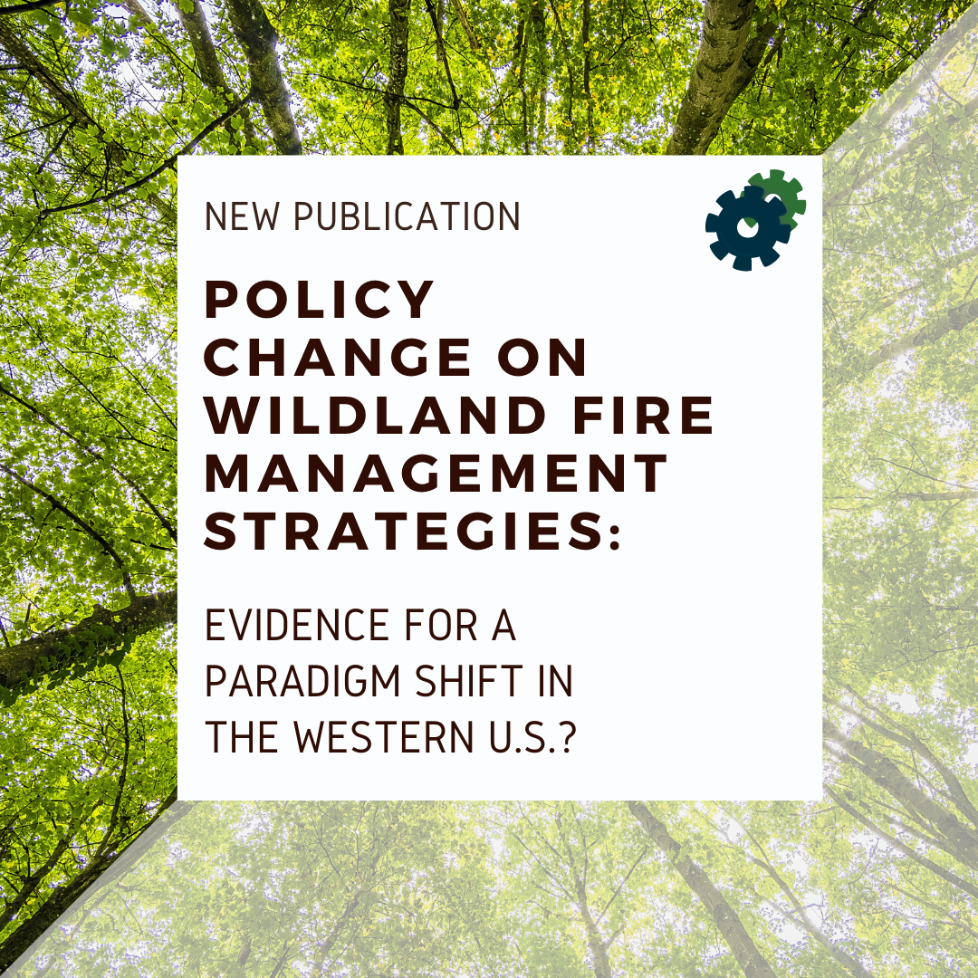 Decorative: Policy change on wildland fire management strategies: evidence for a paradigm shift in the Western U.S.?