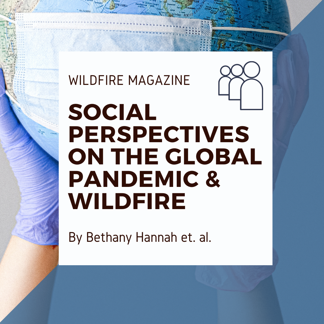 Social perspectives on the global pandemic and wildfire