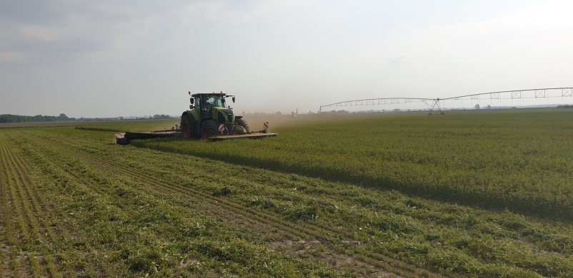 Organic certified lucerne crop being harvested at EVM for farm4more's green biorefinery