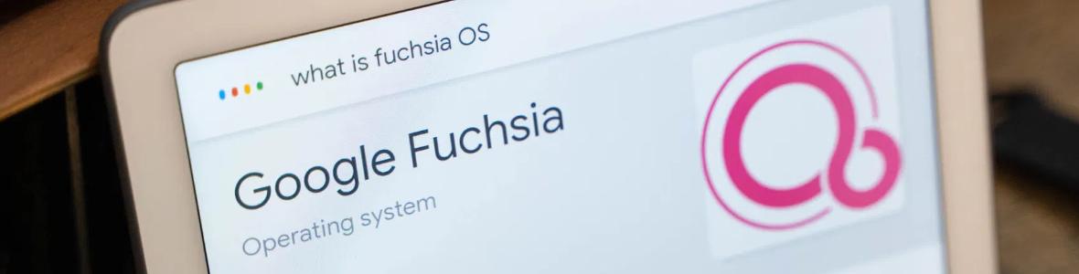 Image Fuchsia enfin disponible pour tous les Google Nest Hub