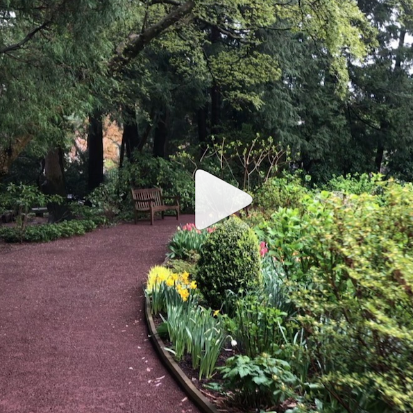 Prospect Garden video
