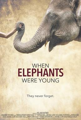 When Elephants Were Young Film Cover Image