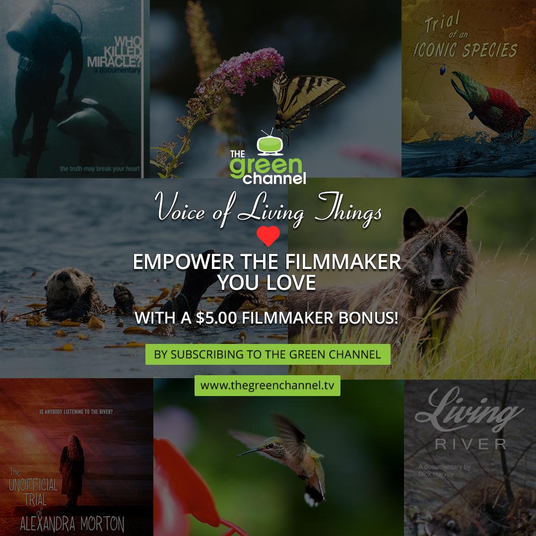 Empower the Filmmaker you LOVE with a $5.00 Filmmaker Bonus!