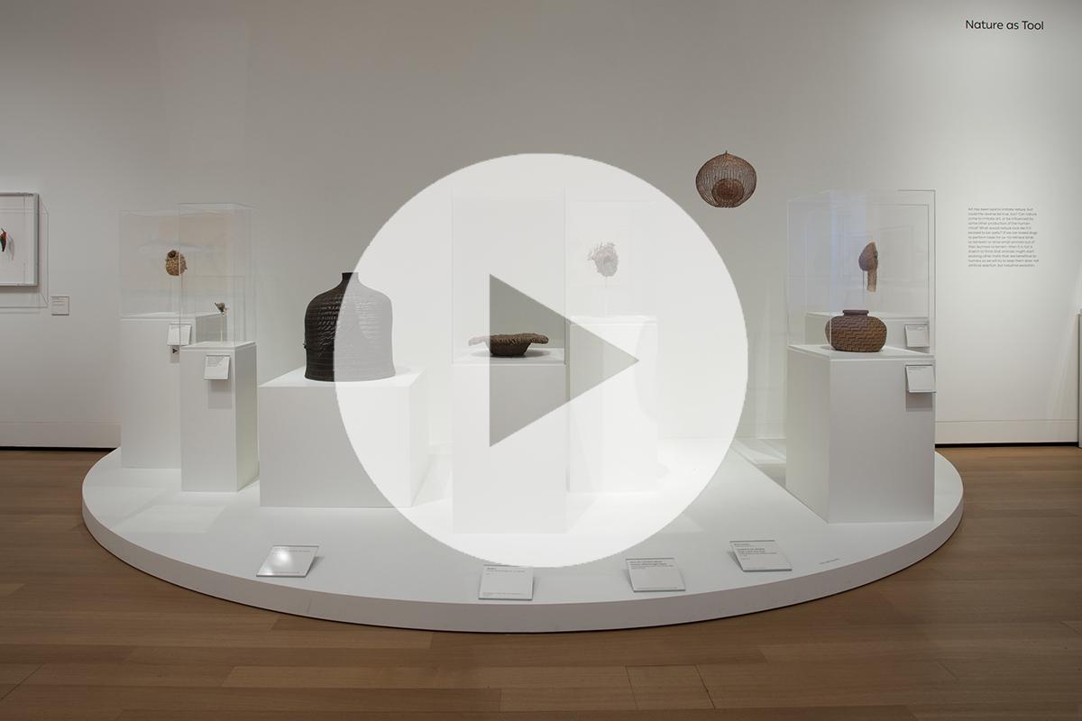 View of Art, Artifact, Artiface