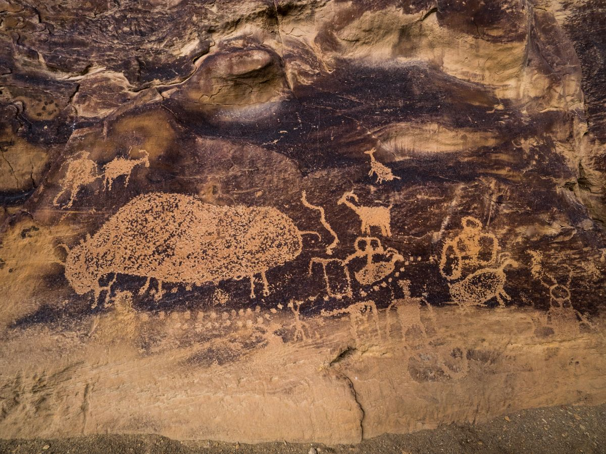 Big buffalo panel, a collection of petroglyphs (images etched into the rock) in Nine Mile Canyon.