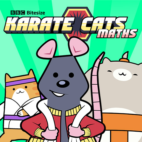 Karate Cats Maths