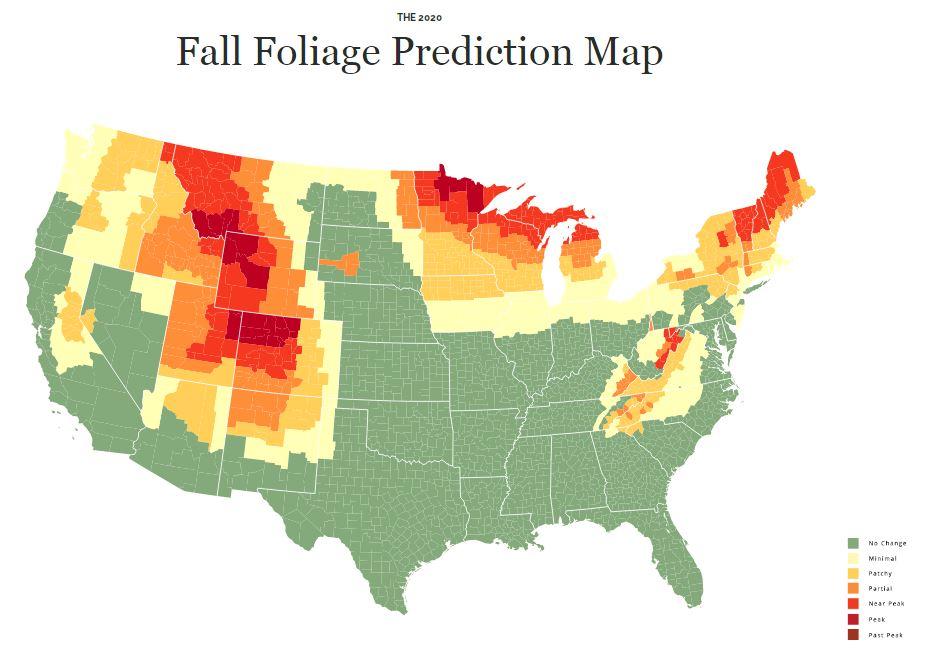Fall foliage prediction map