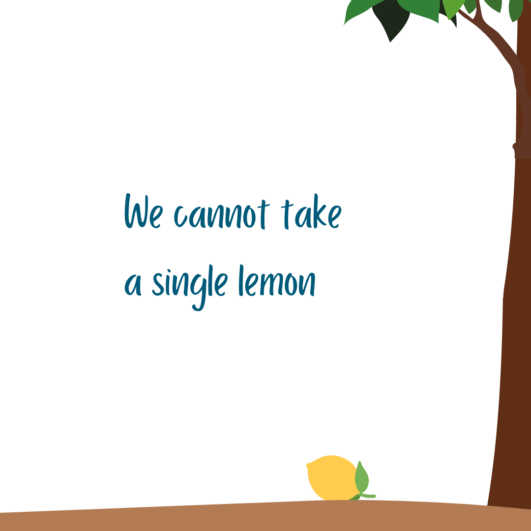 We cannot take a single lemon