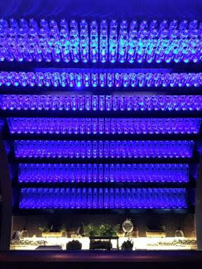 Bar Feature with 630 glass bottles