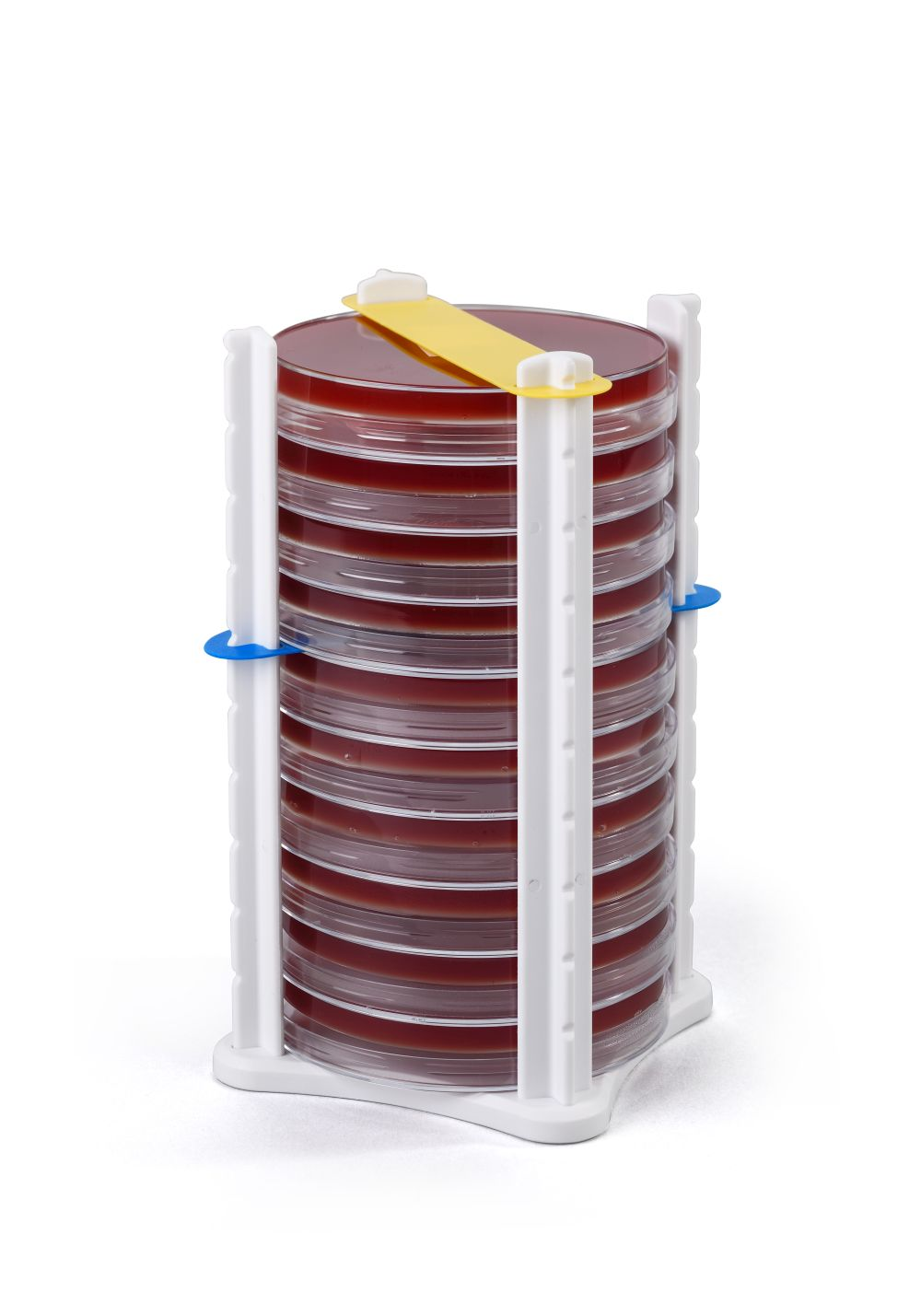 10 Plate Petri Dish Holder