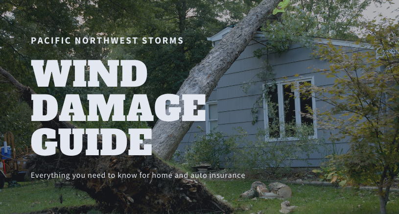 Blue house with large tree uprooted leaning on roof. Pacific Northwest storms; Wind damage guide. Everything you need to know for home and auto insurance.
