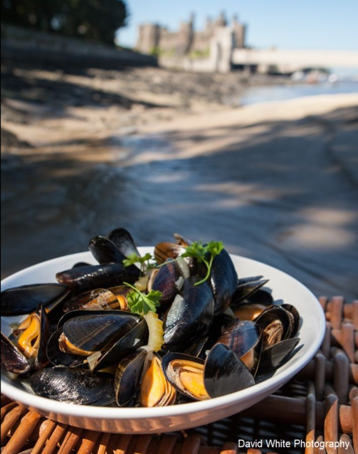 Conwy Moules Mariniére