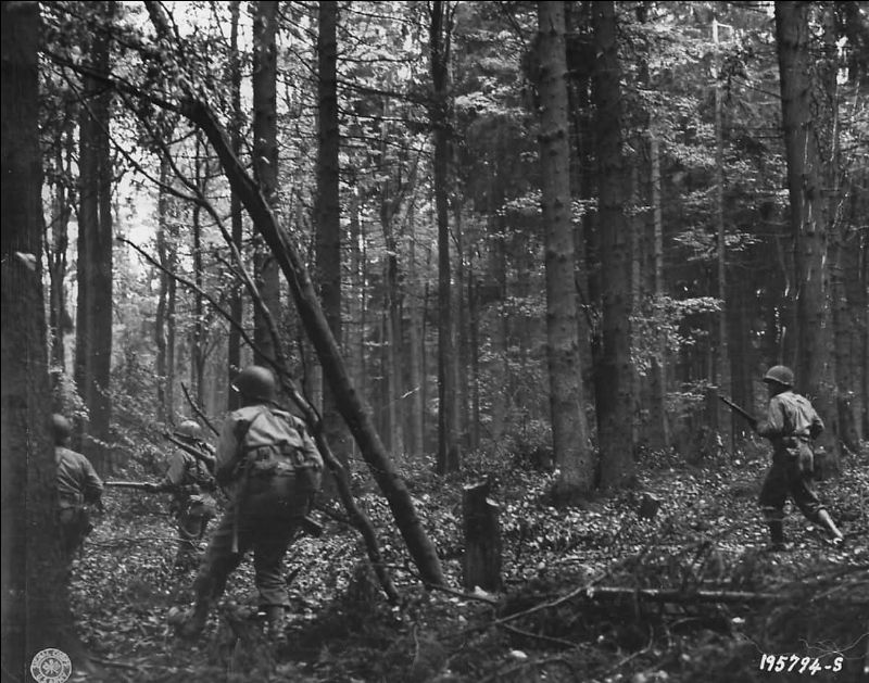 Infantrymen of the 28th Division advancing through the Hürtgen Forest (Photo: U.S. Army)