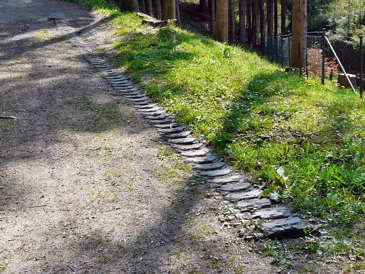 Modern photo of tank tracks embedded in the ground in the Hürtgen Forest. They were laid down during the battle to increase traction for other vehicles. (Photo: historytrips.eu)