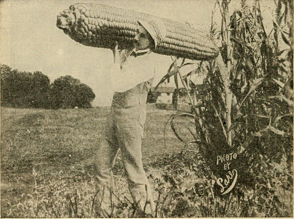 A mustachioed man holding a giant corn on the cob over his shoulder.