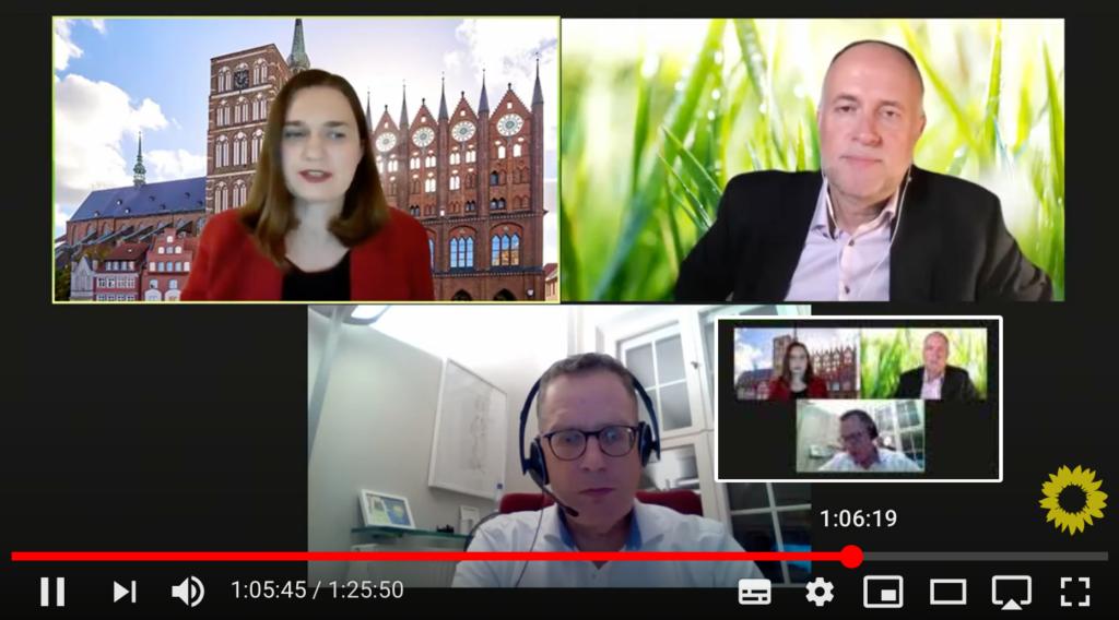 Screenshot aus der Videokonferenz