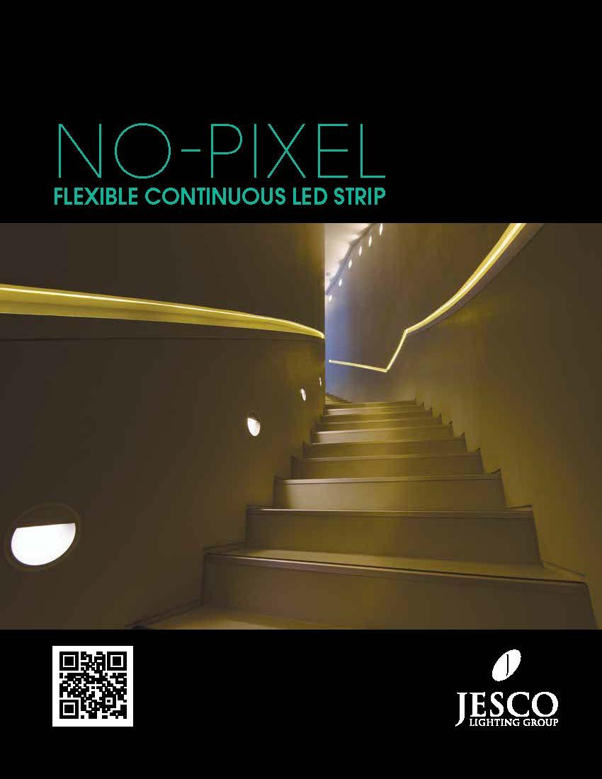 NO-PIXEL DL-FLEX2-NPX catalog