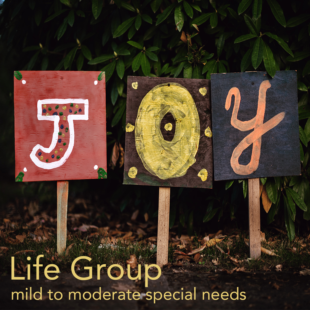 Joy Special Needs Life Group | Thursday @ 7-8:30pm | baylife.org/groups