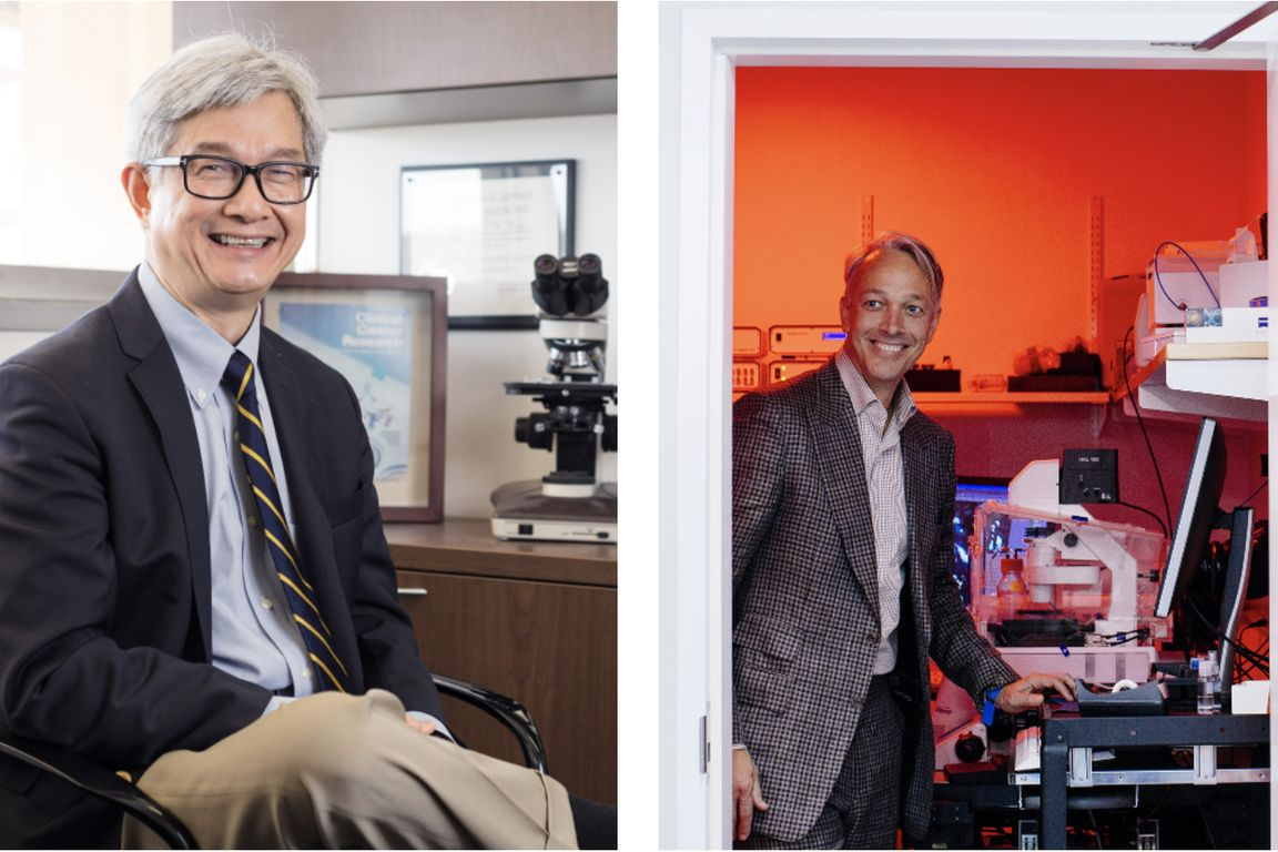David Wong and Alexander Hoffmann
