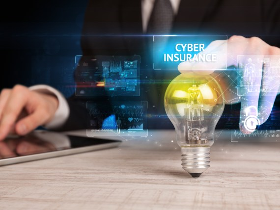 How the U.S. Cyber Insurance Market Is Performing?
