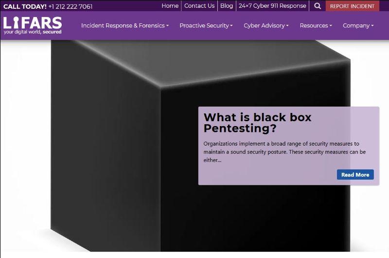 what-is-black-box-pentesting/