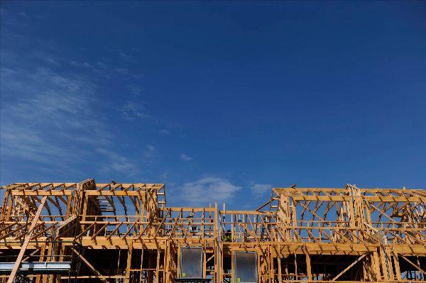 Timber housing frame against blue sky