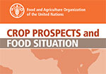 FAO forecasts all-time high global cereal production