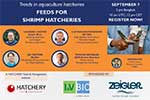 Registration open for Feeds for Shrimp Hatcheries webinar