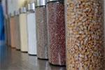 Turning food waste into aquafeeds