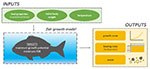 New decision-support tool to optimize feeding rates while reducing waste in seabass and seabream