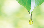 BTSA introduces 100% organic tocopherol-based antioxidant