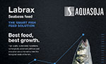 Aquasoja adds floating pellets to its seabass feed range