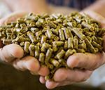 Barentz acquires Pestell Nutrition